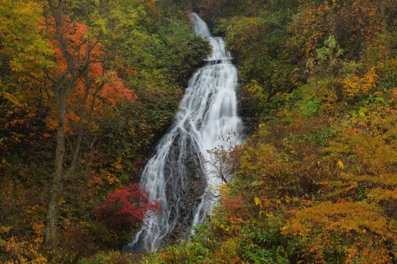 段瀑| 紅葉の中を流れ落ちる段瀑。白い布のような上品な美しさがありました。