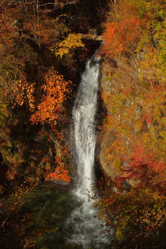 [ 白髪滝 ]  板敷渓谷の入り口にある滝。橋の上から眺めることができます。
