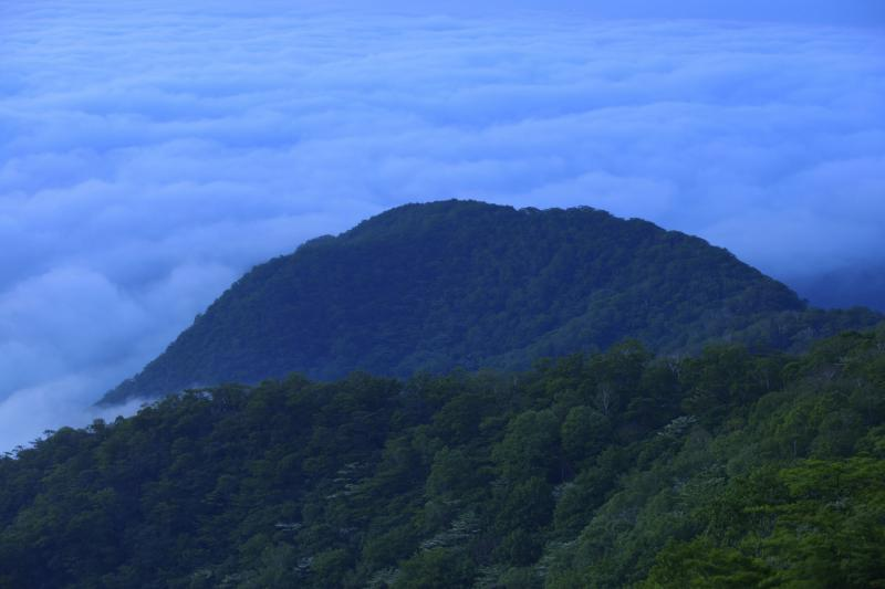 [ 雲海 ]  展望台からは半円形の山が見えます。その奥には雲海が広がっていました。