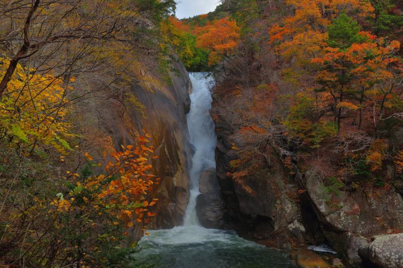 [ 仙娥滝全景 ]  遊歩道から望む仙娥滝。広角気味に撮影すると上部には空が入ります。