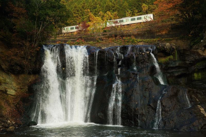 紅葉トレイン| 滝の上の紅葉の中を電車が走り抜けて行きました。滝の音があるので電車の音は聞こえません。いきなり電車が通り抜けていきます。