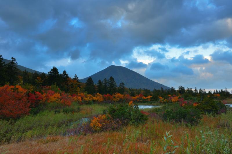[ 睡蓮沼 ]  八甲田エリアで人気の高い睡蓮沼。紅葉して色付いた木々が沼を囲んでいました。