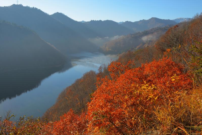 [ 奥只見湖俯瞰 ]  道路脇から奥只見湖を見下ろしています。手前の木々の葉が紅葉していました。