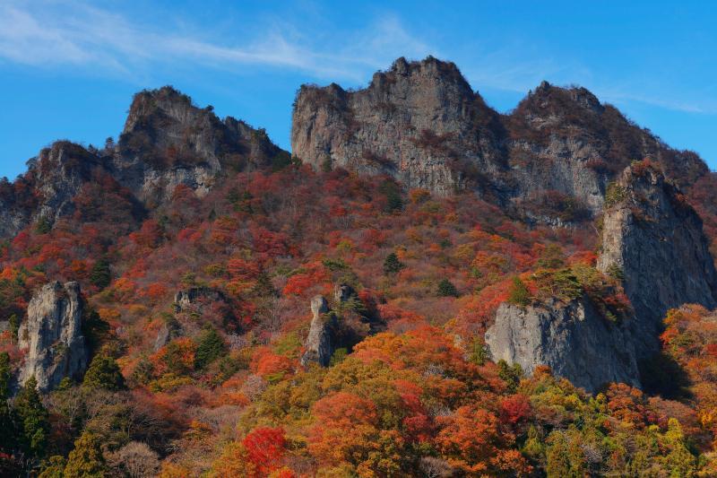 [ 妙義山紅葉 ]  急峻な岩山を彩る紅葉。青空とのコントラストが美しい。