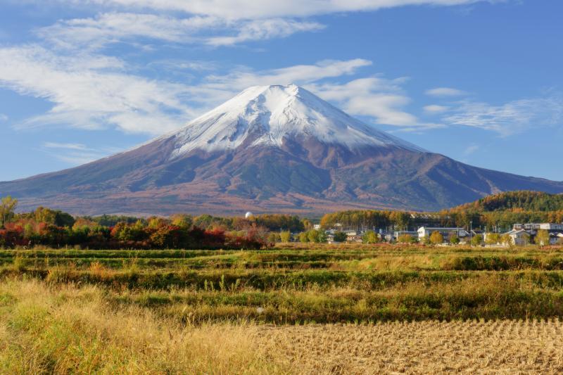 農村公園 富士山| 晩秋、冠雪した富士山と田園風景