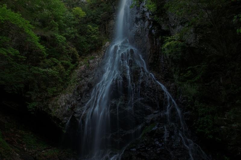静かな流れ| 岩の上から水が流れ落ち、途中で岩に上がり末広がりになっています。フォルムの美しい滝でした。
