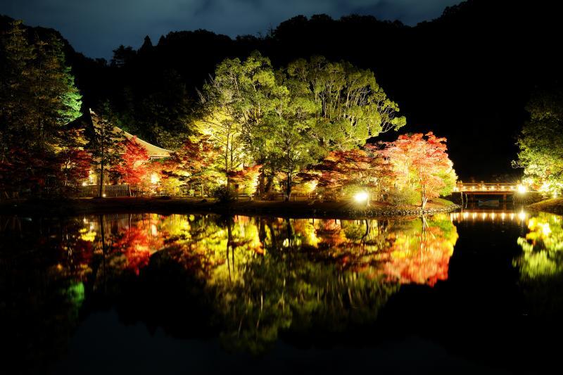 白水阿弥陀堂紅葉ライトアップ| 国宝がライトアップされるという、豪華なイベント。美しい紅葉の映り込みは人気で、たくさんの人が訪れていました。