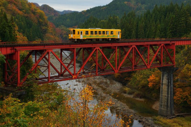 [ 赤い橋梁と秋田内陸線 ]  紅葉に包まれた鉄橋の上を、黄色い一両編成の電車が走り抜けていきました。
