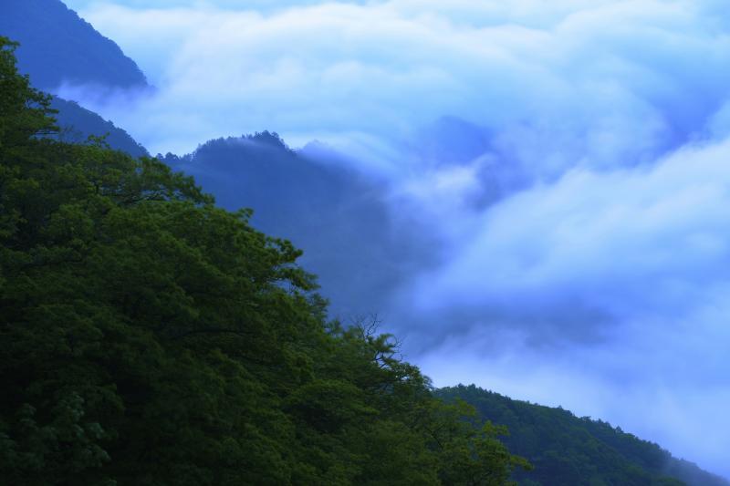 [ うねり ]  眼の前で激しく動く雲海。尾根を乗り越えた雲が次の谷へと流れ込んでいきます。