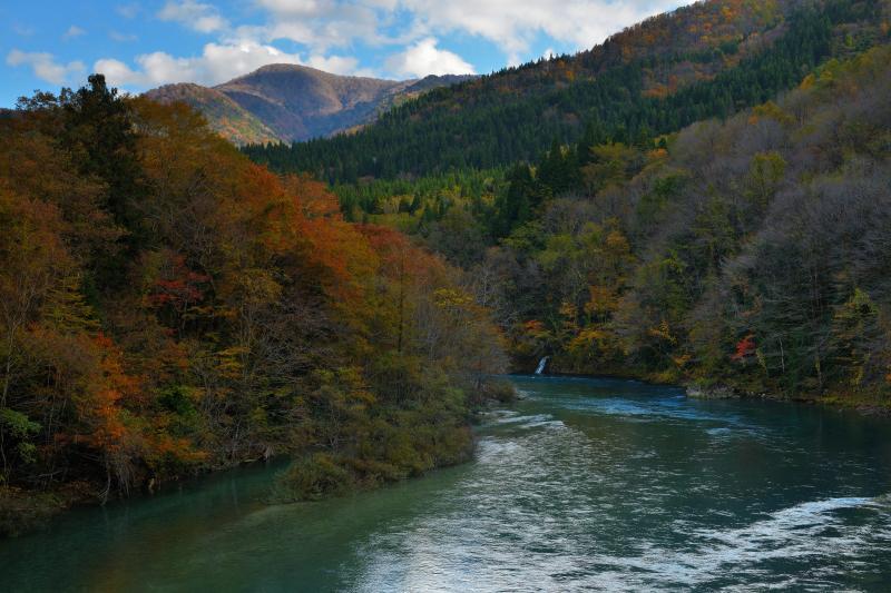 静かな流れ| エメラルドグリーンの美しい川の流れ。紅葉とグリーンの美しきコラボレーション。