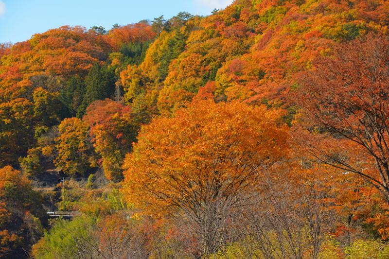 [ 能泉湖紅葉 ]  湖畔の山々は燃えるような紅葉。昇仙峡の奥にある隠れた紅葉名所です。