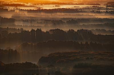 靄と光芒| 靄が流れる林に光が差し込み、美しい光芒が現れました。
