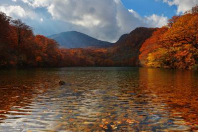 赤沼と赤倉岳| 沼の底まで見える圧倒的な透明度。紅葉に囲まれた沼の奥には八甲田連峰の赤倉岳が見えます。
