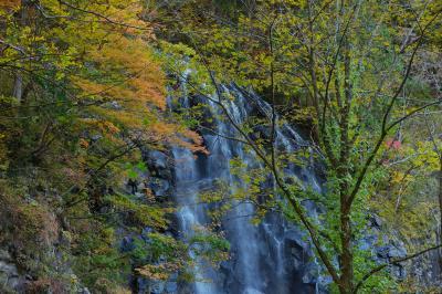 一の滝 紅葉  一の滝は登山道から手前に紅葉の木々を入れて撮影することができます。