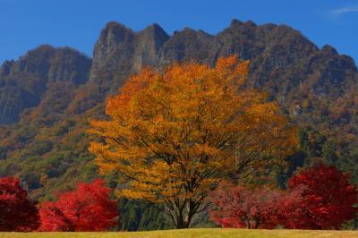 美術館前の紅葉| 美術館前の広場から撮影しました。黄色と赤の紅葉と奇岩「妙義山」。