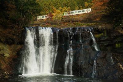 紅葉トレイン  滝の上の紅葉の中を電車が走り抜けて行きました。滝の音があるので電車の音は聞こえません。いきなり電車が通り抜けていきます。