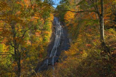 秋深まる  一の滝・二の滝を通り、1時間ほど山道を歩き幸兵衛滝に辿り着きました。100m級の滝は見事な紅葉を見せてくれました。