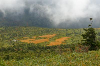 湿原風景| 八甲田山は湿原が多く、天空の楽園のような風景が特徴的です。雲が流れ、神秘的な風景を見ることができました。