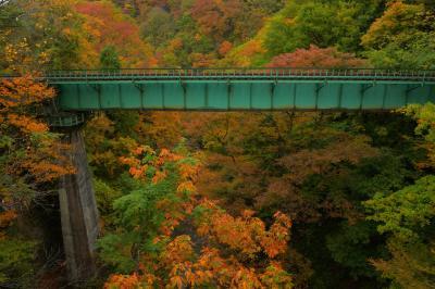 峡谷の紅葉  深い峡谷に架けられた鉄橋。紅葉が鉄橋を囲んでいるフォトジェニックな空間です。
