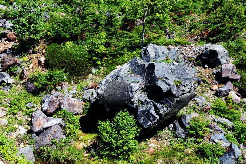 [ 登山道の石 ]  グレーのゴツゴツした岩が転がっています。