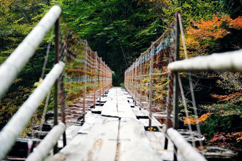 [ 橋の向こうに ]  おんぼろで少し渡るのに勇気のいる橋