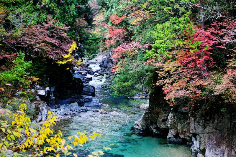紅葉渓谷 色とりどりの紅葉とエメラルドの水