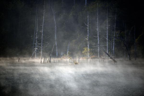 [ 霧の自然湖 ]  湖面から湯気が湧き出て、幻想的です。
