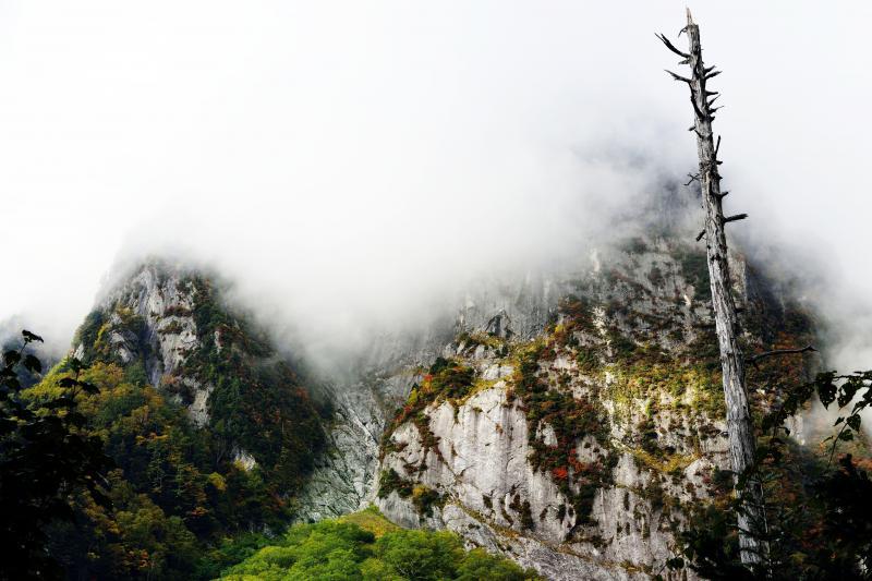 [ 屏風岩 ]  枯れ立ちと雲に隠れる屏風岩