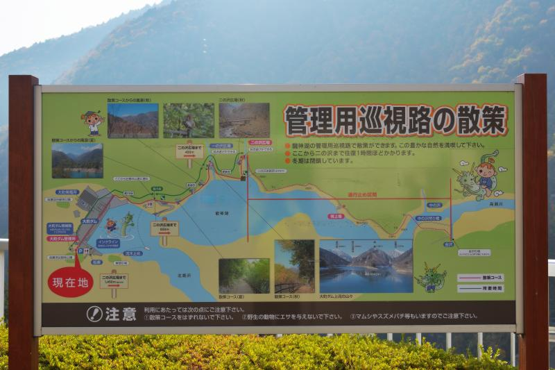 [ 龍神湖の散策案内 ]  ダムの周りに遊歩道があります