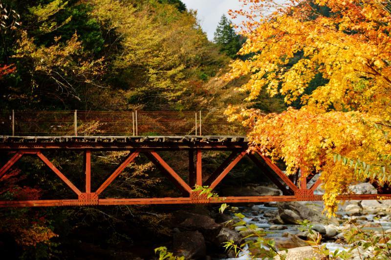 [ 紅葉の橋 ]  線路のような橋の上を渡ることができます