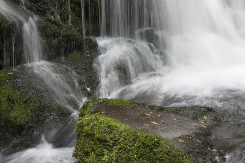 [ 夏の清流 ]  80年前の水が湧き出ている。