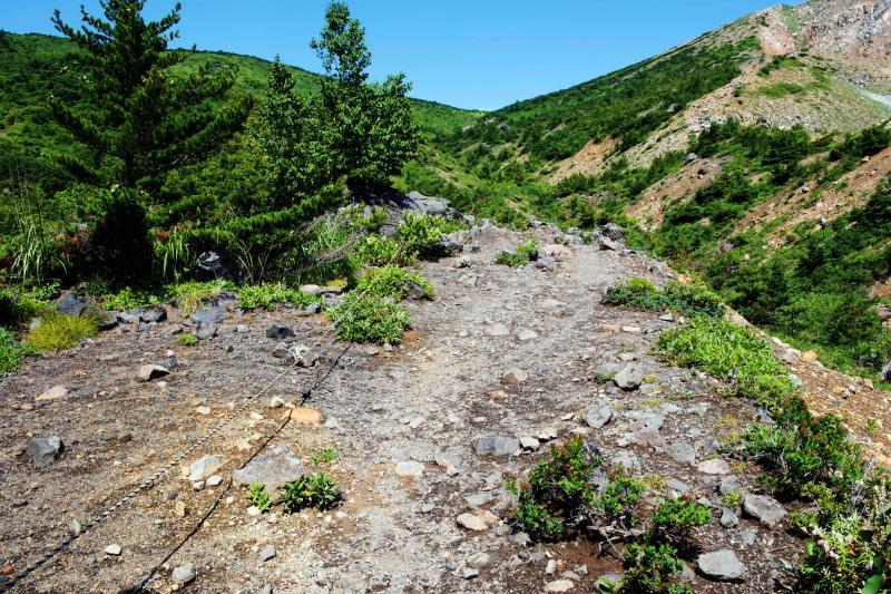 [ 一切経山の登山道 ]  本格的な山道になってきました