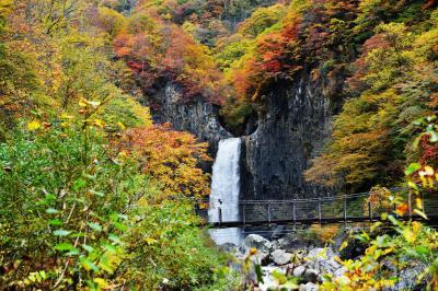 [ 紅葉の苗名滝 ]  半円形に削られた岩から、水が流れ落ちます