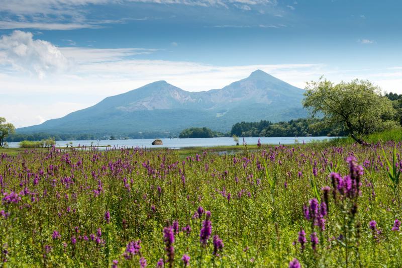 桧原湖・細野の風景 |