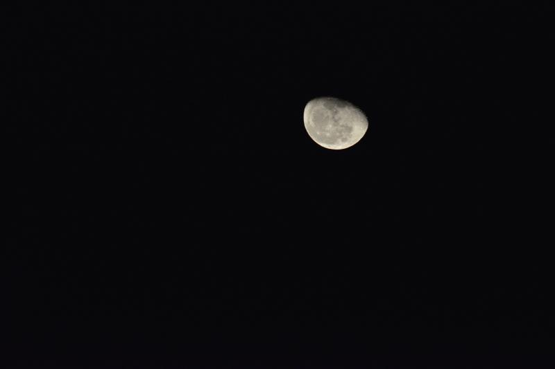 [ 海を照らす月 ]  明るい月が空に浮かんでいました。