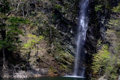 回顧の滝| 美しい姿を見せてくれます