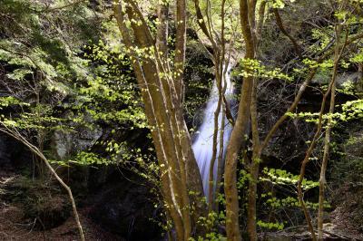 留春の滝|