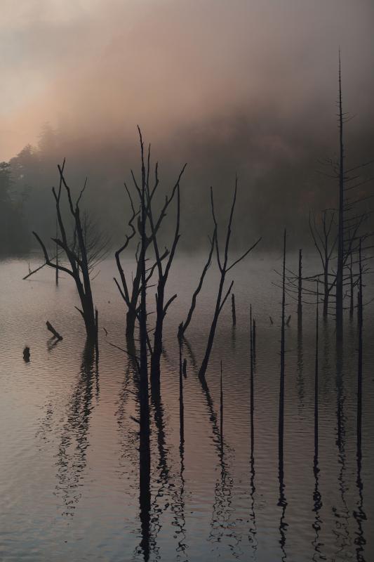 [ 自然湖 ]