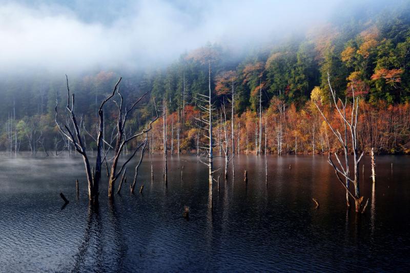 自然湖 |