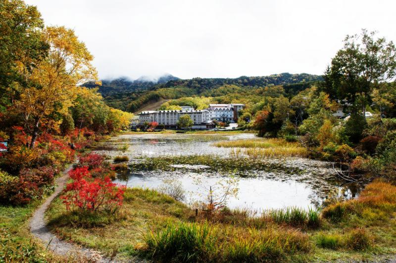 [ 蓮池全景 ]  歩くのに適度な大きさの池です。