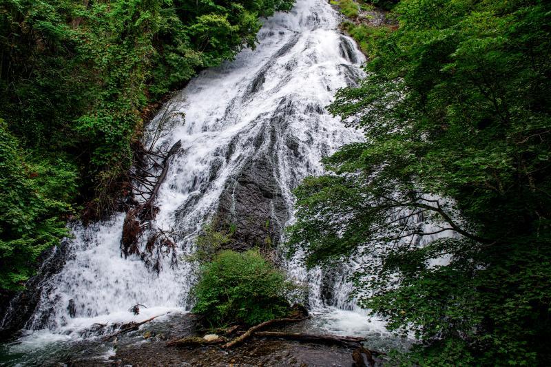 [ 緑の中を末広がりに ]  湯ノ湖から長い岩盤を伝って落ちる見応えのある滝。