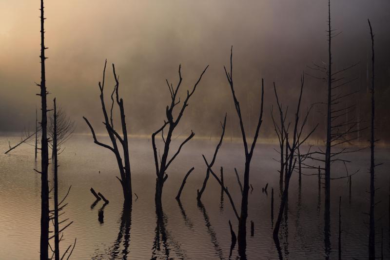 [ 朝焼けの自然湖 ]  情熱的な色彩に変化してきました。