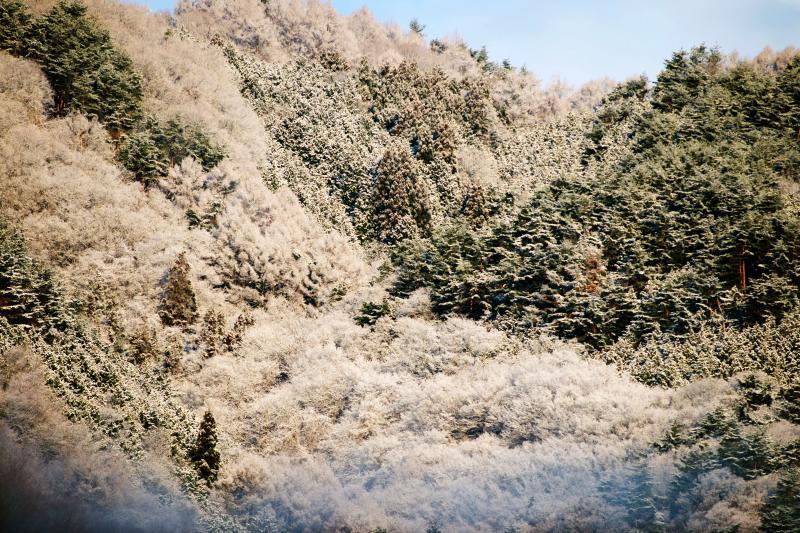 [ 春の雪景色 ]  ミニチュア風になりました。