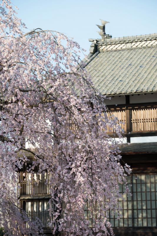 [ 日本の美 ]  歴史を感じます。