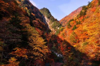 高瀬渓谷| 紅葉に綺麗な谷間に陽がさしこんでいます。