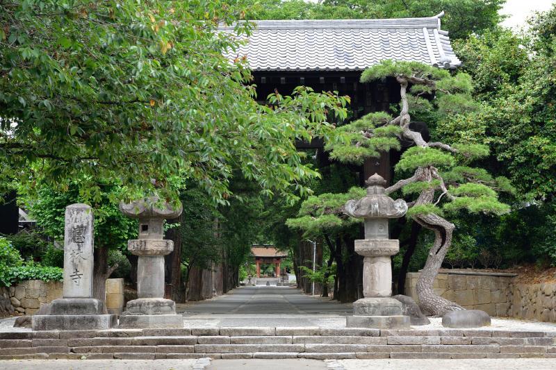 恵林寺の杉並木   武田信玄ゆかりの寺です。