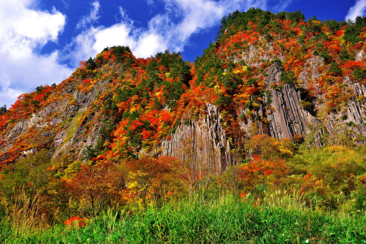 [ 布岩 ]  屋敷付近の道路上から見た布岩。青い空と秋の紅葉が柱状節理の独特な岩肌を際立たせていました。屋敷一帯からは苗場山の雄大な眺めを見ることもできます。