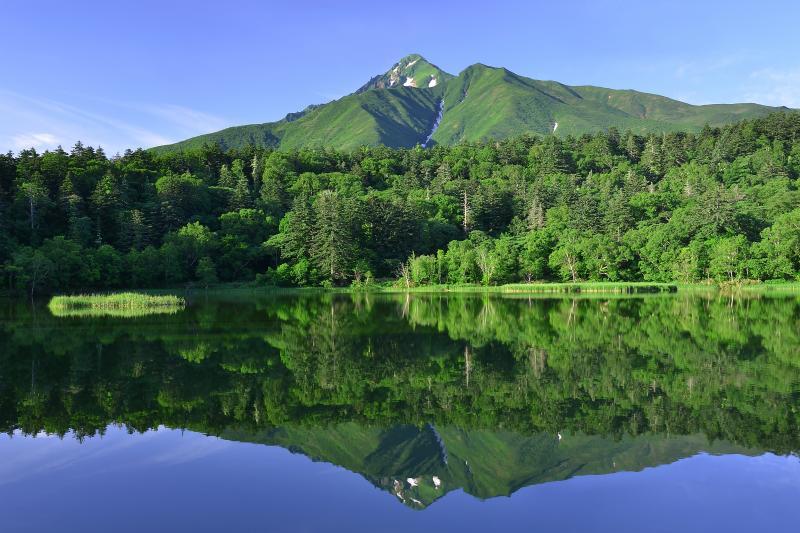 [ 姫沼と利尻岳 ]  7月初旬の姫沼と利尻岳。残雪の残る利尻岳と早朝の光を浴びた新緑が静寂で神秘的な湖面に佇んでいました。