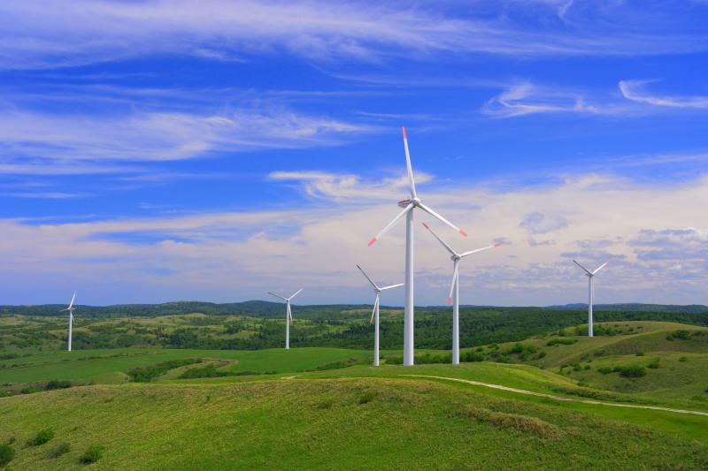 [ 宗谷丘陵ウインドファーム ]  宗谷丘陵フットパスには57基もの風車が立っています。