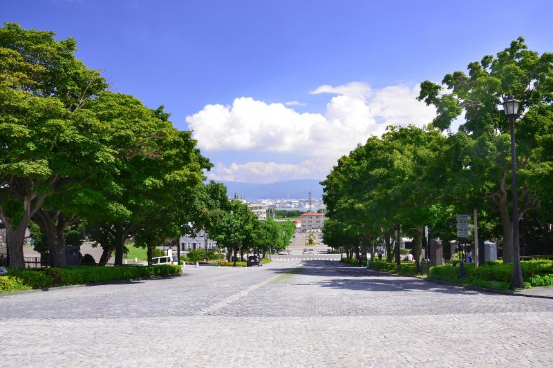 [ 基坂 ]  元町公園の下に広がる石畳の美しい坂です。